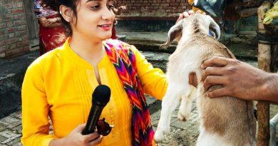 पत्रकार प्रज्ञा मिश्रा का जीवन परिचय | REPORTER PRAGYA MISHRA BIOGRAPHY